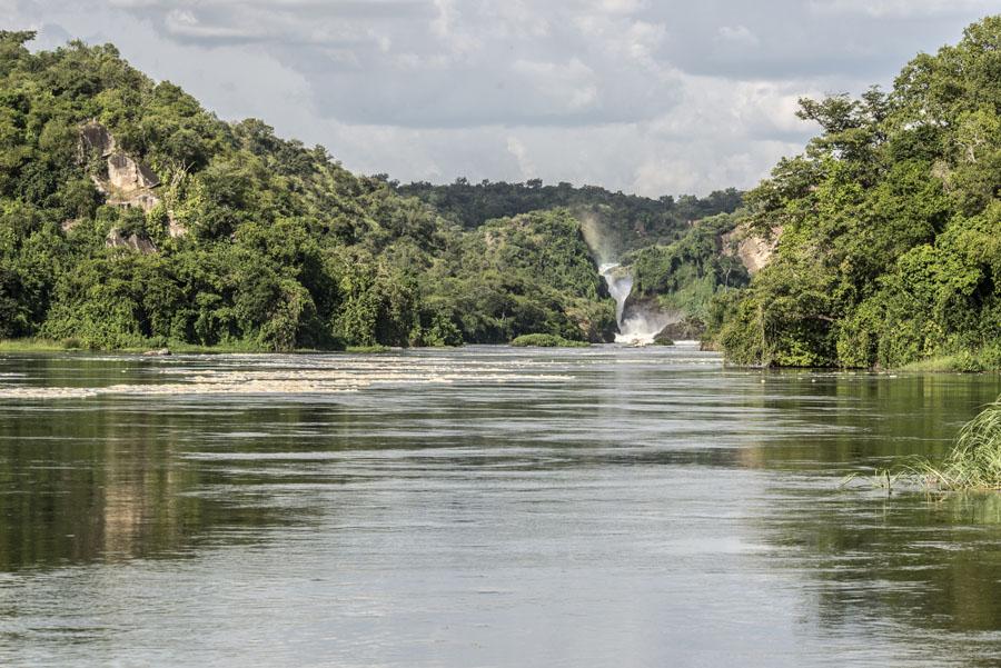 Murchison Falls National Park (105)
