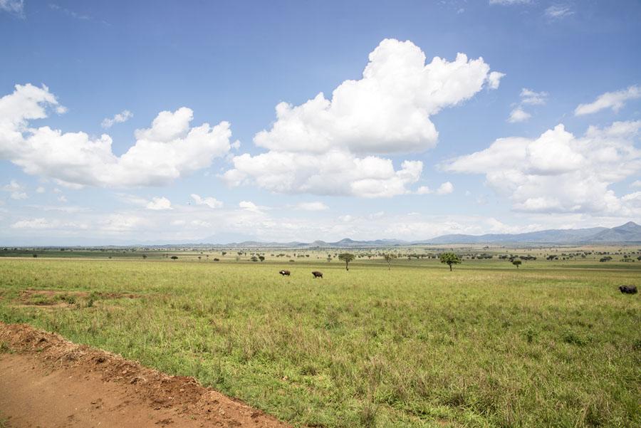 kidepo and karamoja-uganda (2)