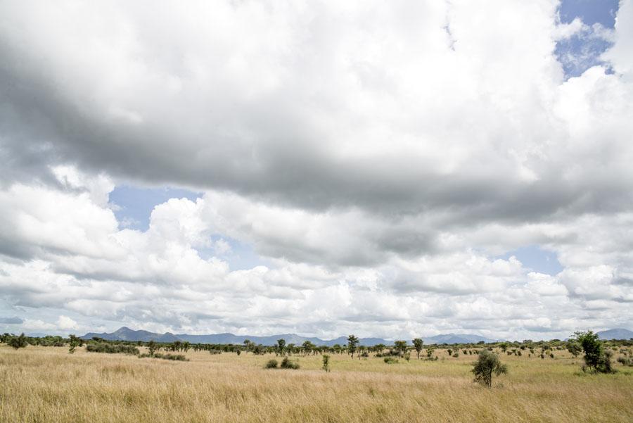 kidepo and karamoja-uganda (8)
