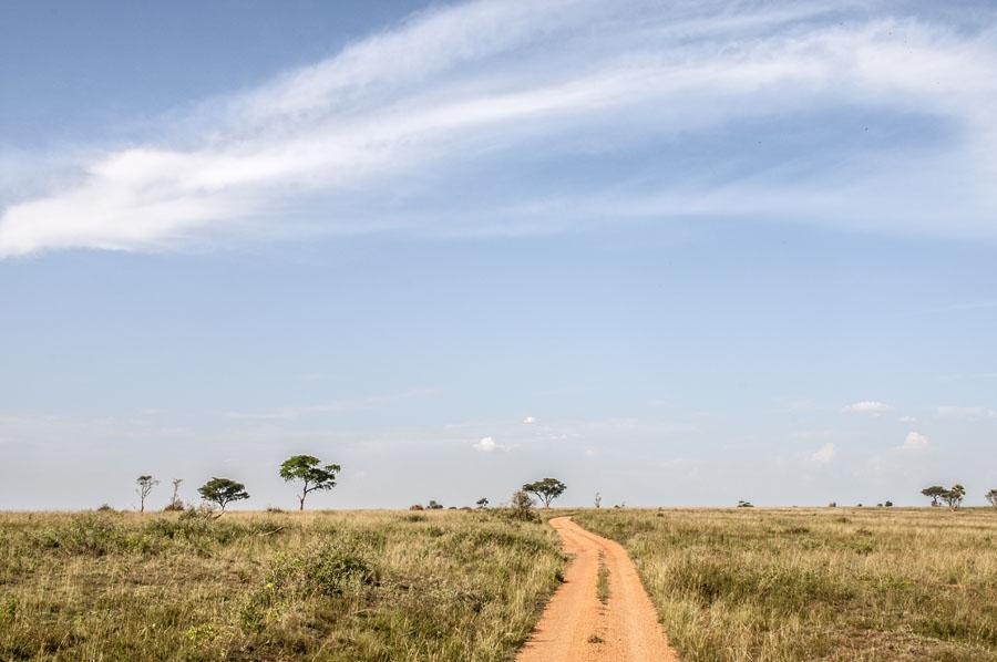 murchison-falls-uganda (326)