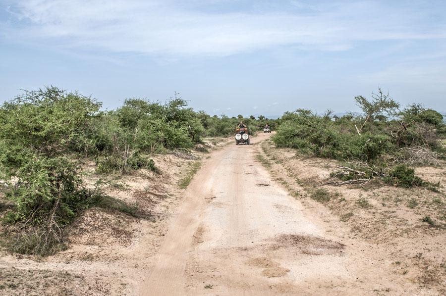 murchison-falls-uganda (349)