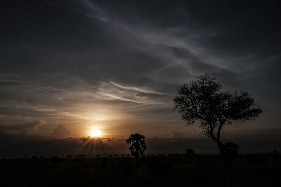 murchison-falls-uganda (357)