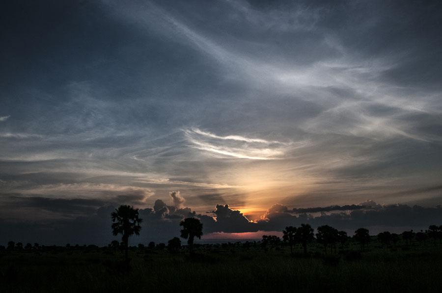 murchison-falls-uganda (358)