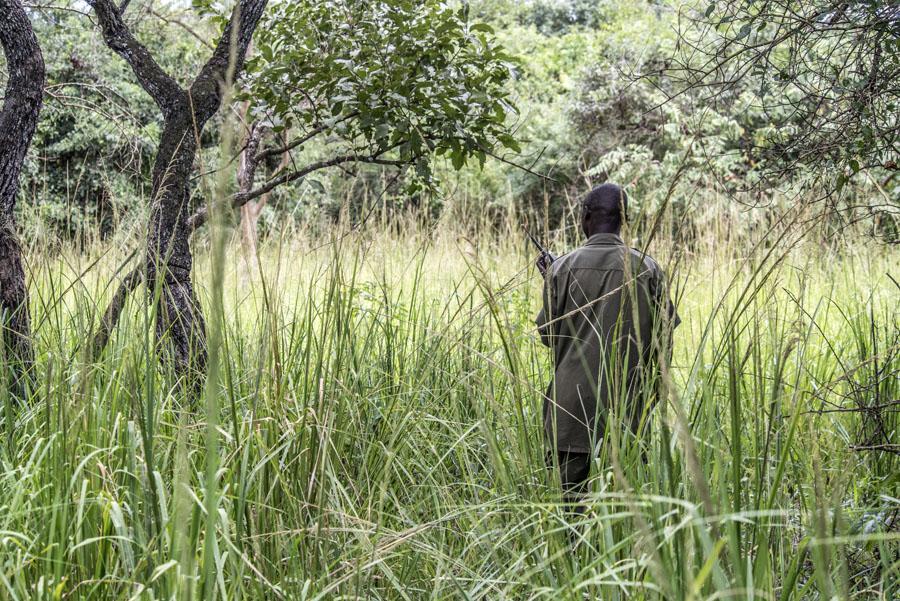 ziwa-rhino-sanctuary-uganda (1)