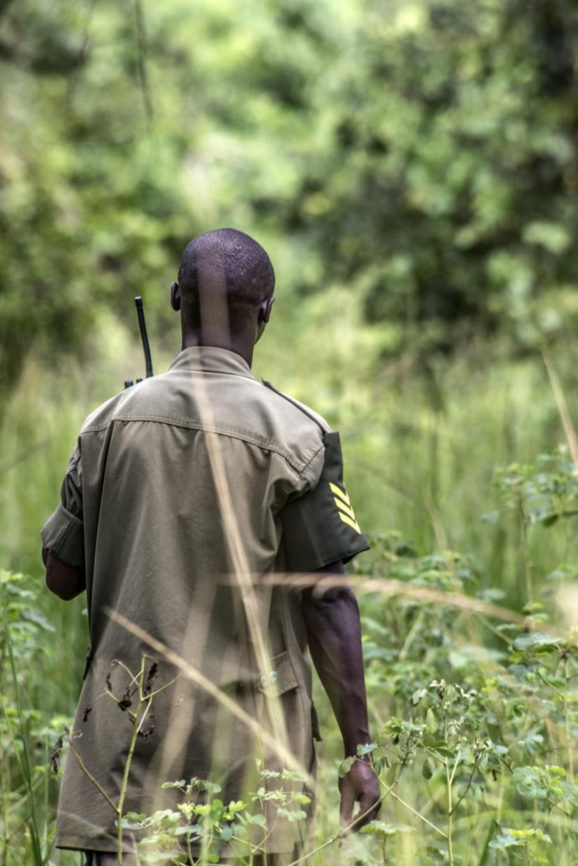 ziwa-rhino-sanctuary-uganda (2)